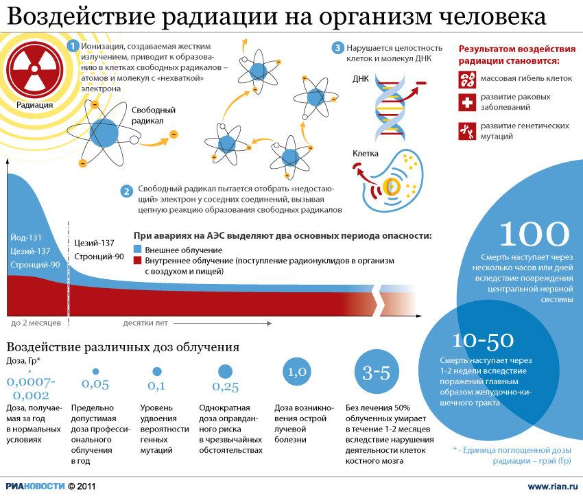 Инфографика Надежда Андрианова