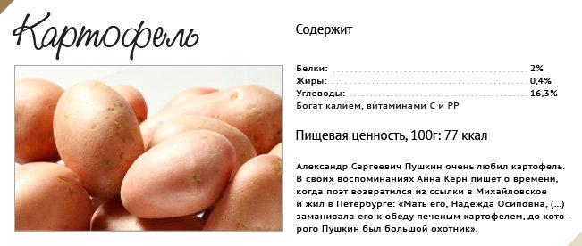 http://rian.ru/images/51030/99/510309961.jpg