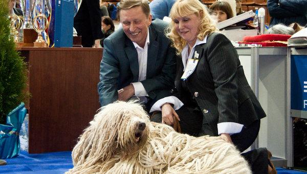 Сергей Иванов на выставке собак в Москве